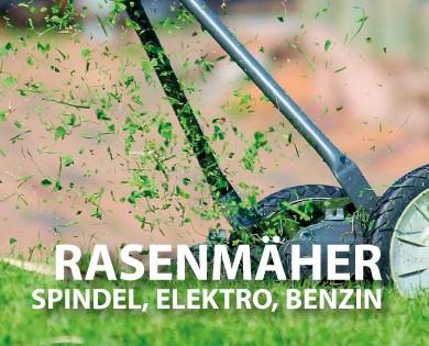 media/image/rasenmaher.jpg